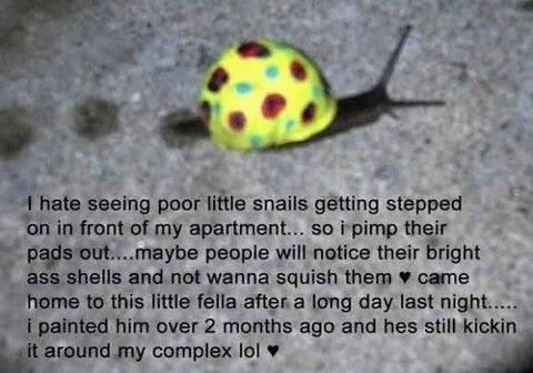 Found on my Facebook feed....save the snails!